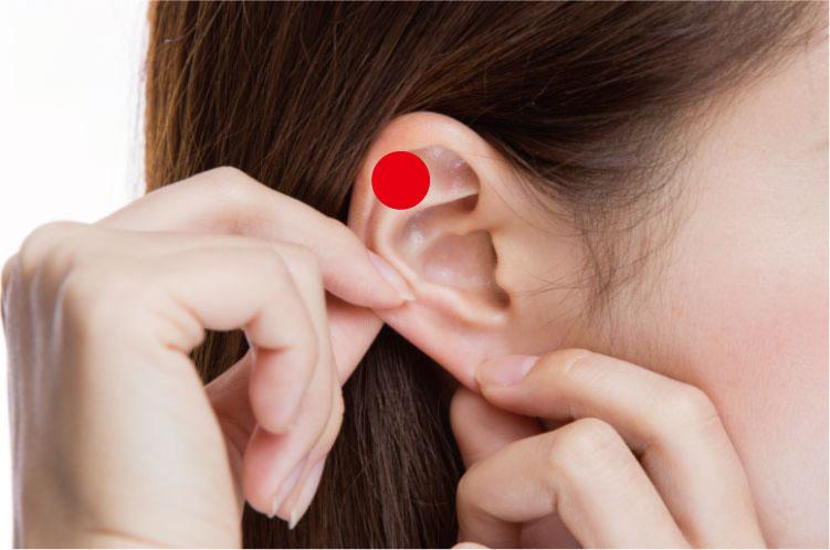 高血圧を下げるツボ 耳 降圧帯